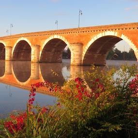 Reflection by Karen Noble - Buildings & Architecture Bridges & Suspended Structures (  )