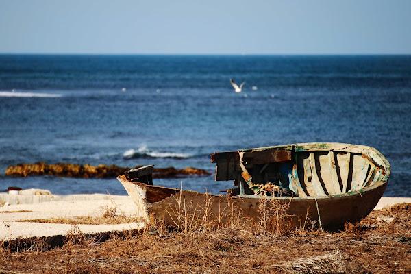 c'era una barca di zucco
