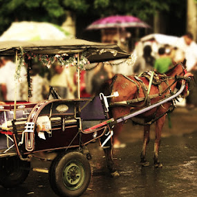 Traditional Transportation by Roland Roger - Transportation Other
