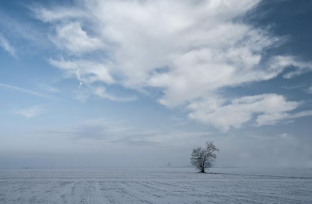 Foschia invernale di Livius