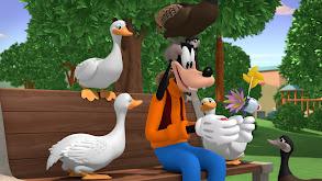 Duck, Duck Geese!; Shhhhh! thumbnail
