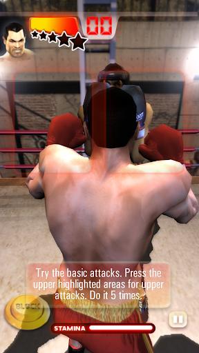 Realtech Iron Fist Boxing ss3