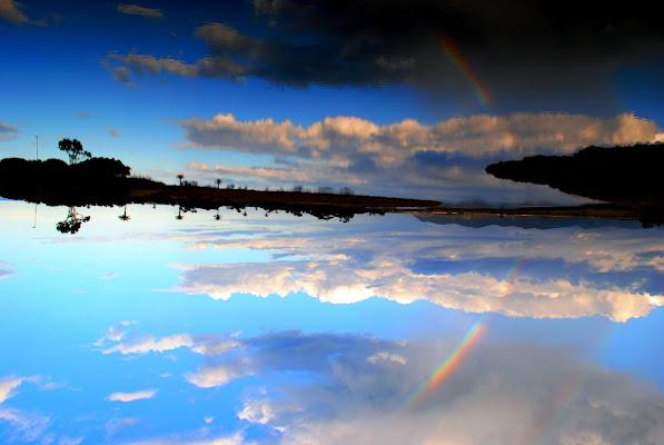 over the rainbow di Vikycarta