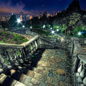 Spooky Rendezvous by William Cho - Landscapes Travel ( history, old mansion, telok blangah hill park, spooky, solitaire, alkaff, rich & famous, singapore, terrace garden, abandoned )