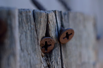 Photo: G+ is #onthefenceWednesday  Is this the first macro for +On The Fence Wednesday +Natosha Davis?