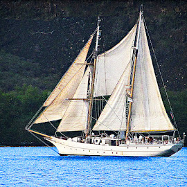 Leaving Kealakekua Bay by Joseph Vittek - Digital Art Things