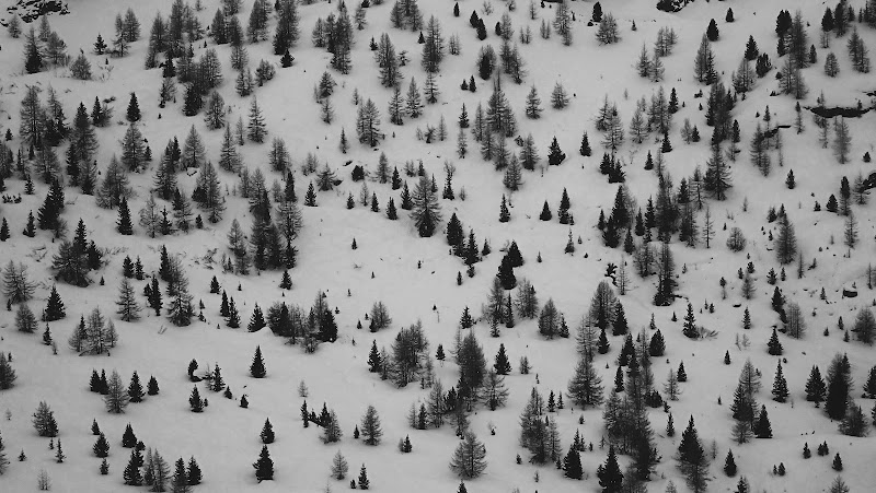 Jacquard d'inverno di laura62