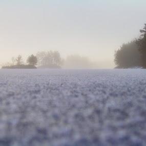 February`s fog by Inna Cleanbergen - Landscapes Weather ( bergen, #everydaybergen, hordaland, fog, norge, landscape, norway )