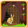 Lapin Escape from Cage