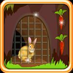 Rabbit Escape from Cage Icon