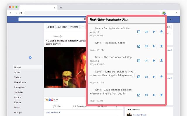 Flash Video Downloader Plus