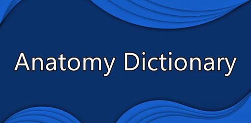 Anatomy Dictionary Apps On Google Play