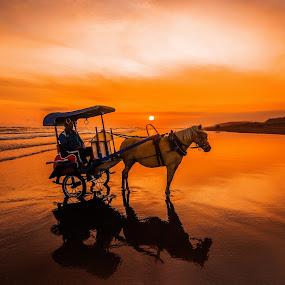by Luna Almira  Ali - Transportation Other (  )