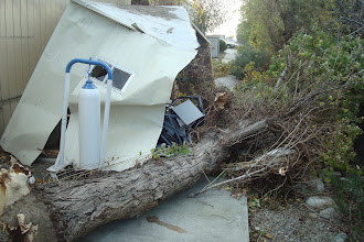 Photo: Shed behind an office building at City of Hope.