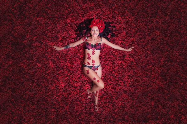 American Beauty di Laura Benvenuti