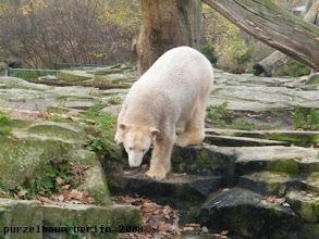 Photo: Hinunter zum Wassergraben ;-)