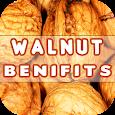 Walnut Benefits icon