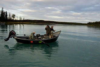 Photo: Running a drift in Rainbow Alley on the middle Kenai  for rainbow trout. Using a  20 ft  Willie drift boats can be a stealth approach to catching rainbows.