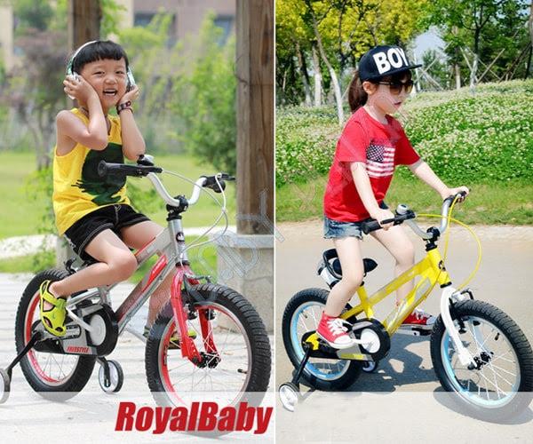Xe đạp RoyalBaby RB-17 4