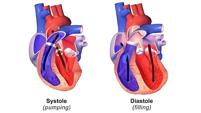 What's the Difference Between Diastolic and Systolic Heart Failure?