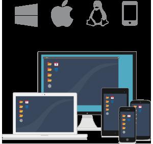 Suderinamas su visomis pagrindinėmis operacinėmis sistemomis, jis leidžia jums saugiai teikti puikią nuotolinę pagalbą internetu.