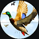 Download Duck hunting season 2019: Bird Shooting Games 3D For PC Windows and Mac