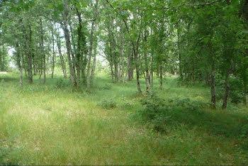 terrain à Payrac (46)