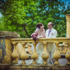 Wedding photographer Aleksandr Pavlenko (Pavlenko). Photo of 25.07.2014