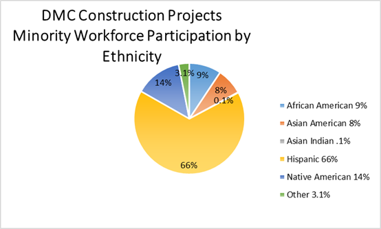 DMC Construction Minority
