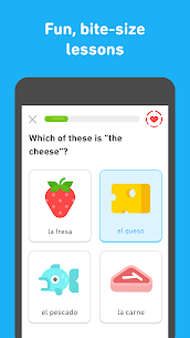 Learn English with Duolingo MOD APK (Premium) 2