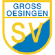 Download SV Gr. Oesingen For PC Windows and Mac