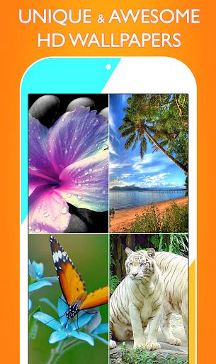 Wallpapers HD 1.7.4 screenshots 1