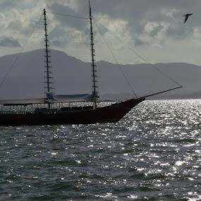 Prazer by Volnei Fraga - Transportation Boats