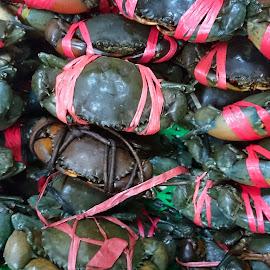 by Mulawardi Sutanto - Food & Drink Ingredients ( seafood, travel, crab, food, bandung )