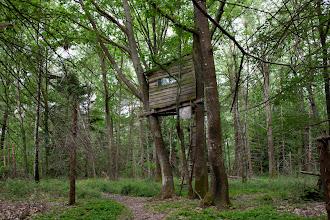 Photo: Cabane dans les arbres Fôret de Rohanne: détruit pendant la prémiere semaine des expulsions