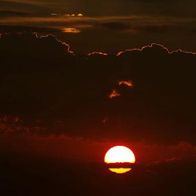 Pilandsberg sunrise by Tony Wilson - Landscapes Sunsets & Sunrises