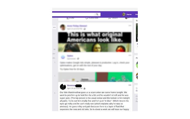 Aaron's FB news feed cleaner