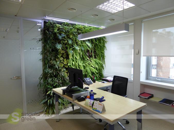Conjunto de jardines verticales de interior para oficinas for Jardin vertical interior casa