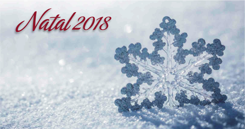 Luna Hotels & Resorts | Web Oficial - Christmas Luna Hotel Serra da Estrela
