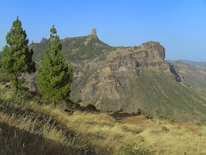 Photo: Roque Nublo