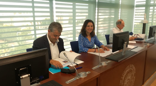 El Consejo Social aprueba las cuentas anuales 2019 de la Universidad de Almería