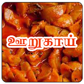 Tamil Samayal Pickle