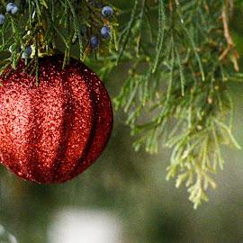 Christmas Ornament by Lorraine D.  Heaney - Public Holidays Christmas