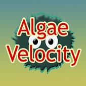 Tải Algae Velocity miễn phí