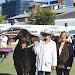 Wendy Ferguson, Wave Hill Jager, Royal Brisbane Show groom, Sylvia Kirkby and Scott Ferguson.