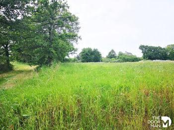 terrain à Lanvallay (22)