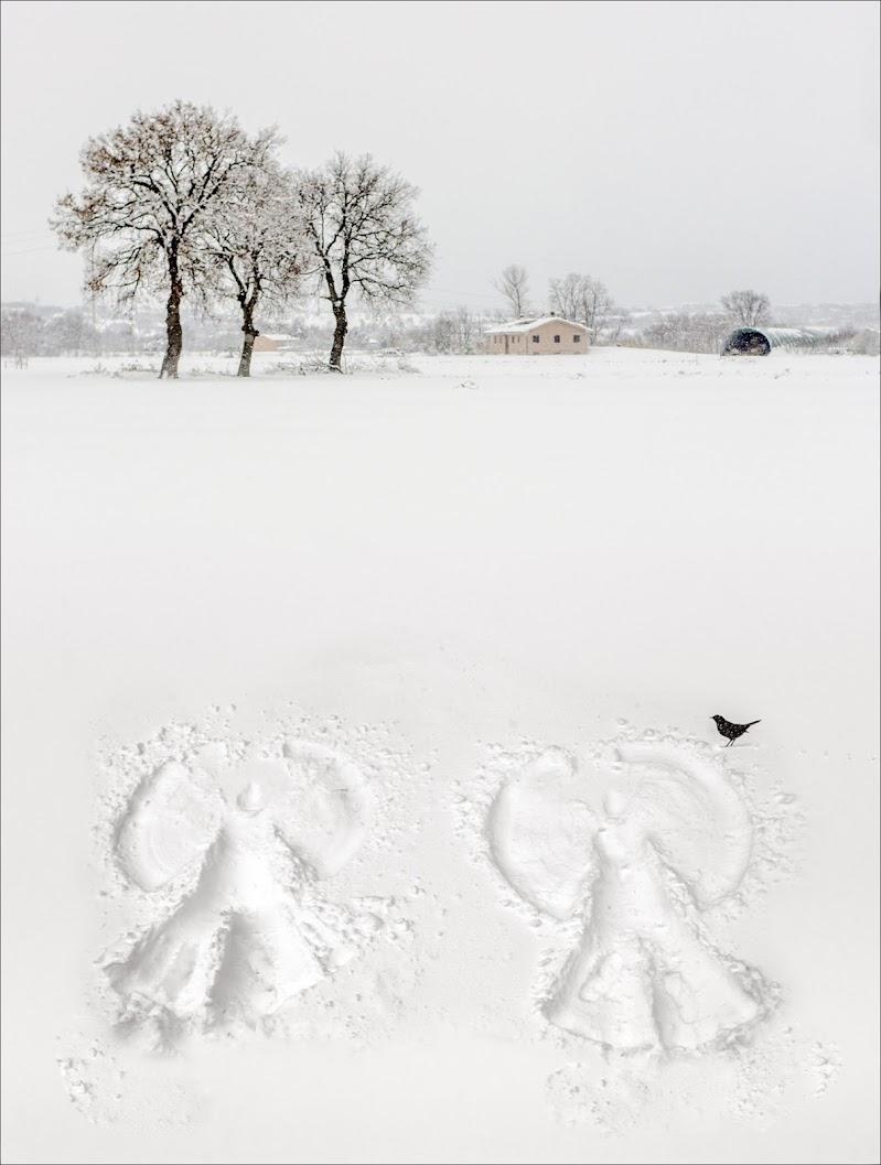 gli angeli della neve di alberto raffaeli