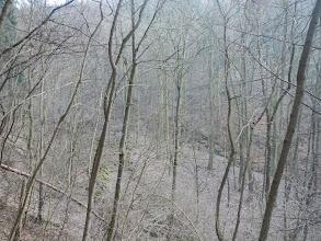 Photo: Dolní část údolí (13.1. 2014).