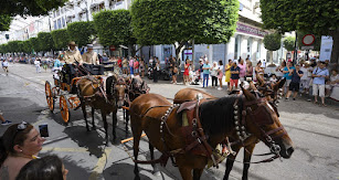 Uno de los carruajes tirados de cuatro caballos