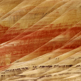 Painted by Craig Pifer - Landscapes Mountains & Hills ( hills, oregon, painted, john day fossil beds, colors, streaks, landscape, painted hills )